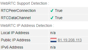 WebRTC leak test: