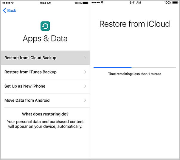 How to Reset iPhone to Factory Settings from iCloud